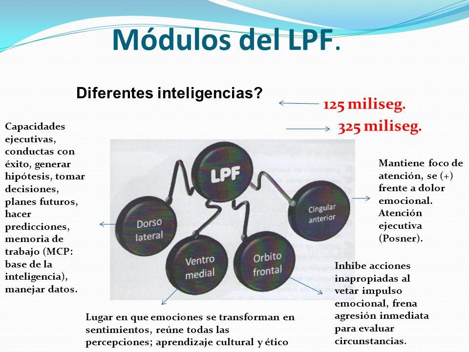 Módulos del LPF. Diferentes inteligencias 125 miliseg. 325 miliseg.