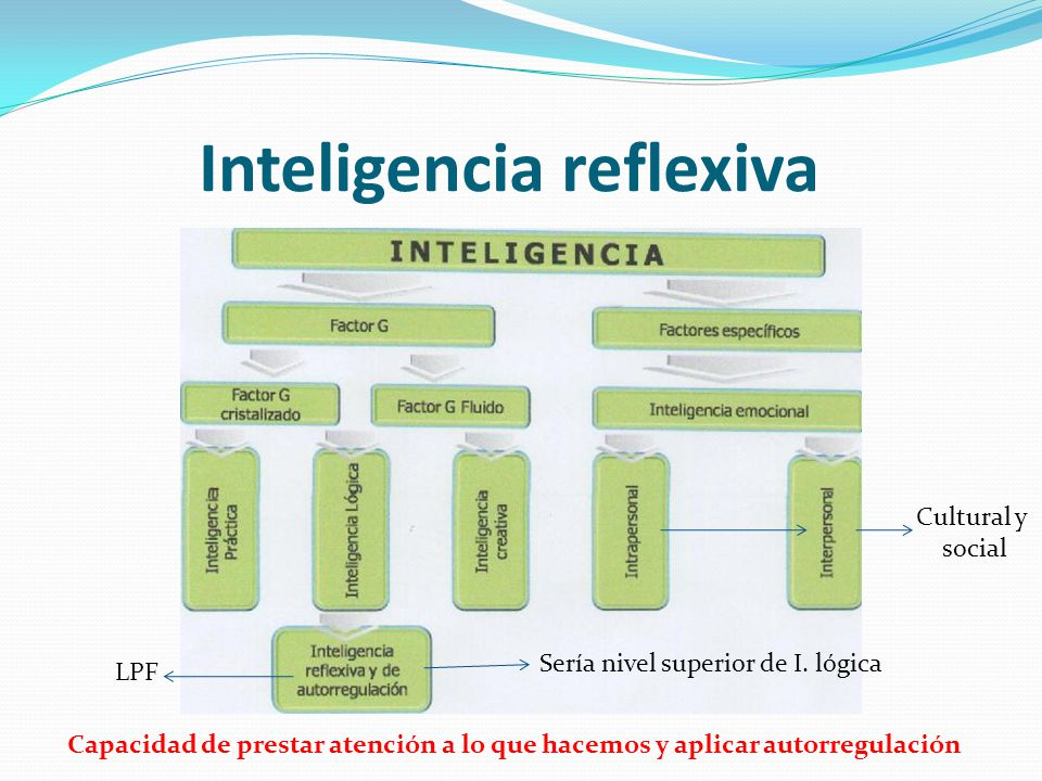 Inteligencia reflexiva
