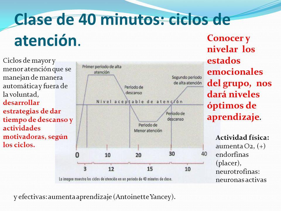 Clase de 40 minutos: ciclos de atención.