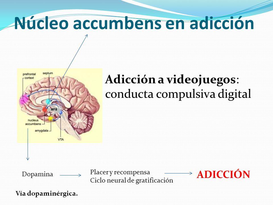 Núcleo accumbens en adicción