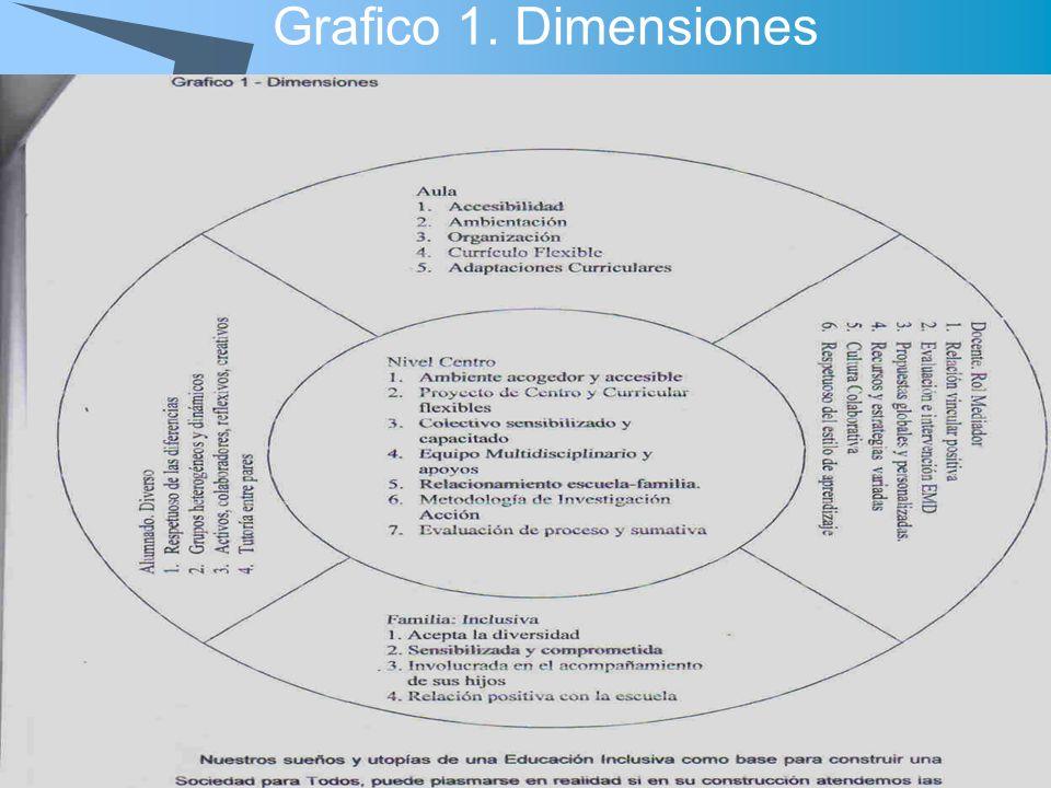 Grafico 1. Dimensiones