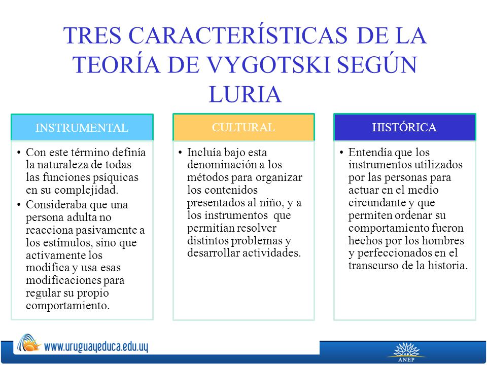 TRES CARACTERÍSTICAS DE LA TEORÍA DE VYGOTSKI SEGÚN LURIA