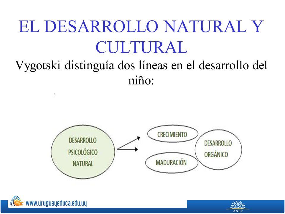 EL DESARROLLO NATURAL Y CULTURAL Vygotski distinguía dos líneas en el desarrollo del niño: