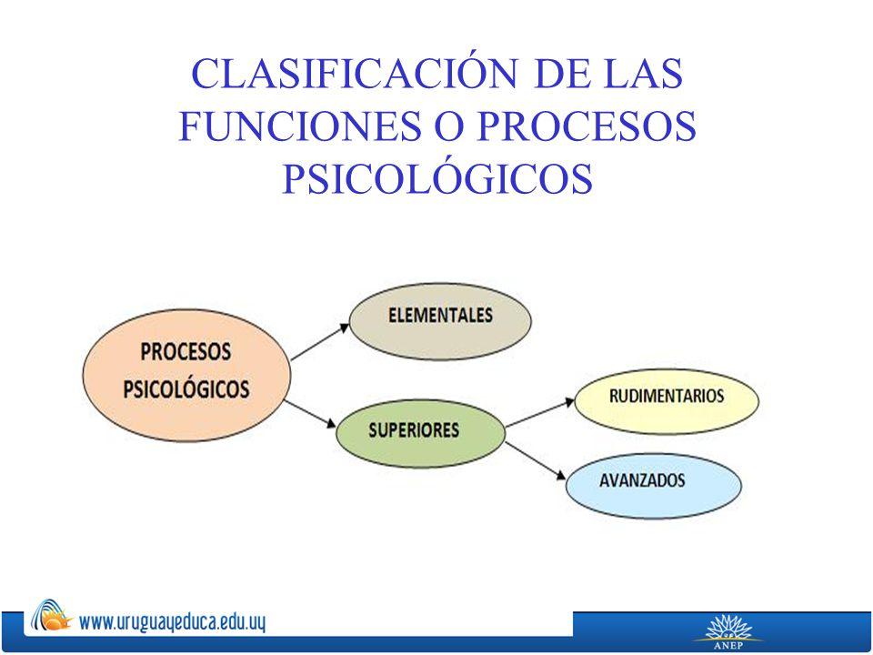 CLASIFICACIÓN DE LAS FUNCIONES O PROCESOS PSICOLÓGICOS