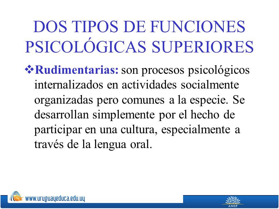 DOS TIPOS DE FUNCIONES PSICOLÓGICAS SUPERIORES