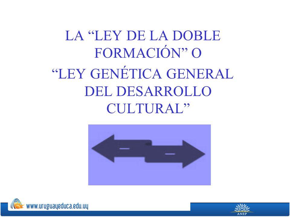 LA LEY DE LA DOBLE FORMACIÓN O LEY GENÉTICA GENERAL DEL DESARROLLO CULTURAL