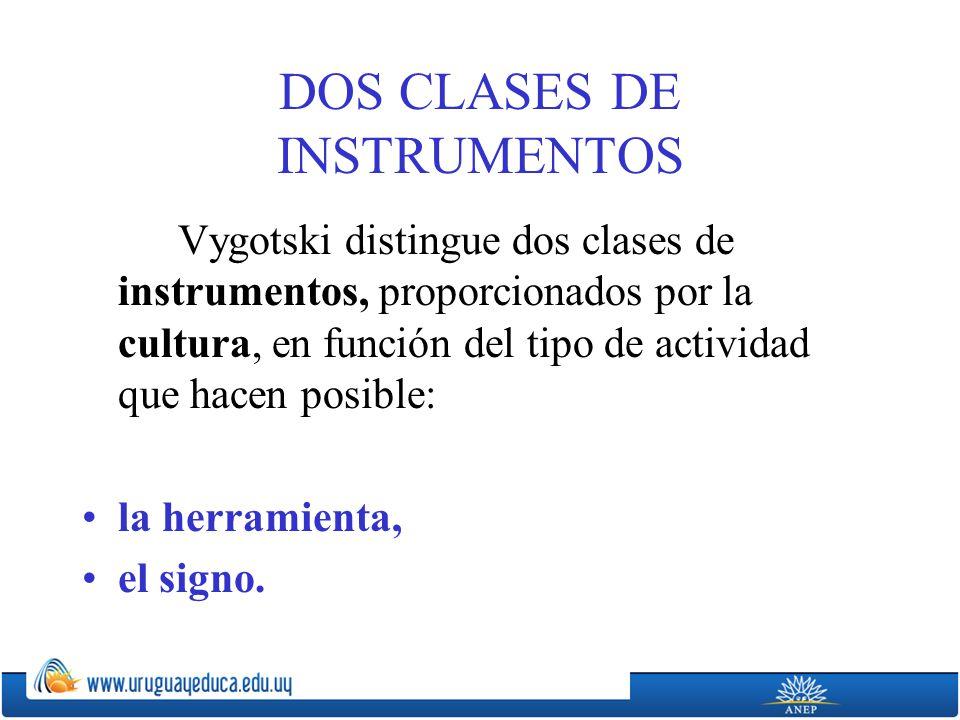 DOS CLASES DE INSTRUMENTOS