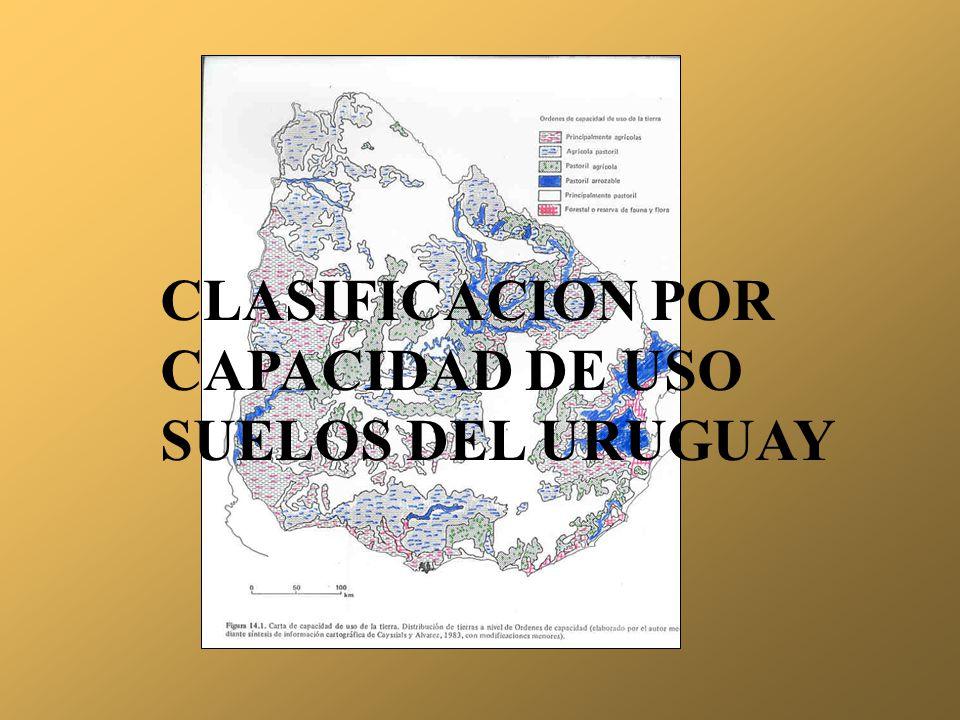 CLASIFICACION POR CAPACIDAD DE USO