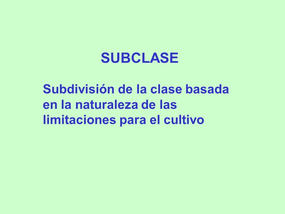 SUBCLASE Subdivisión de la clase basada en la naturaleza de las limitaciones para el cultivo