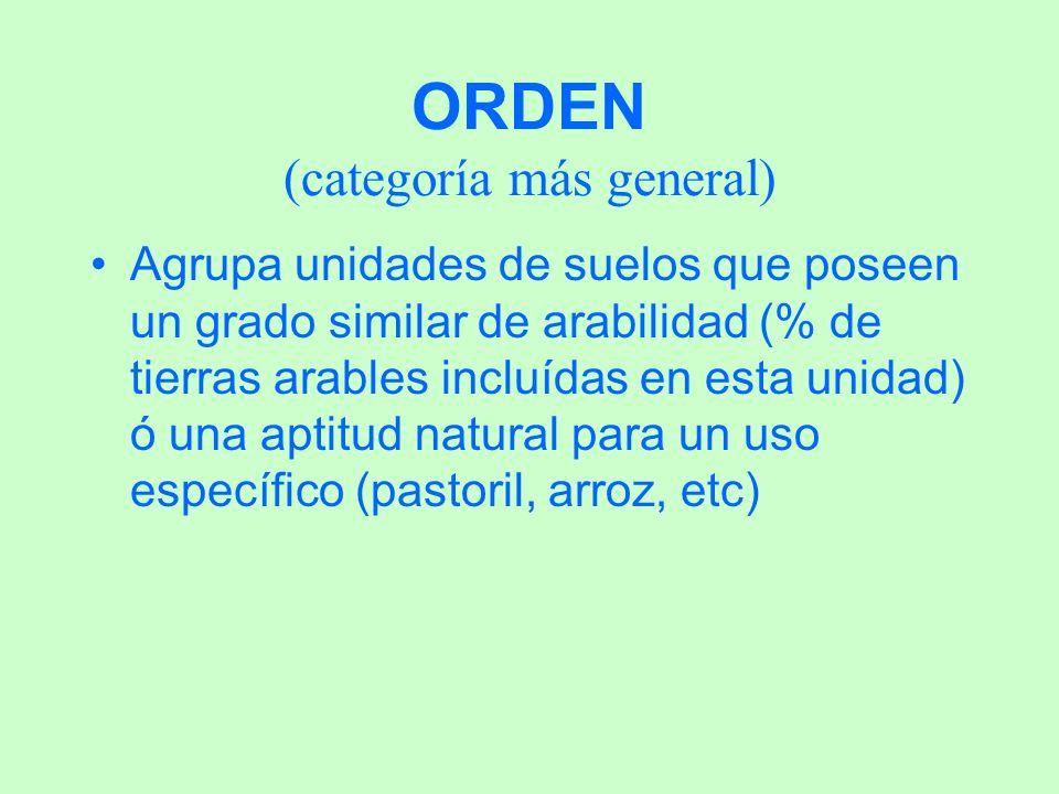 ORDEN (categoría más general)