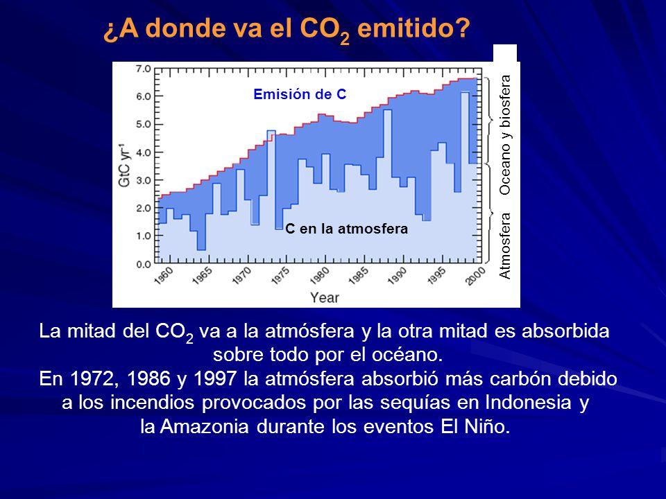 ¿A donde va el CO2 emitido
