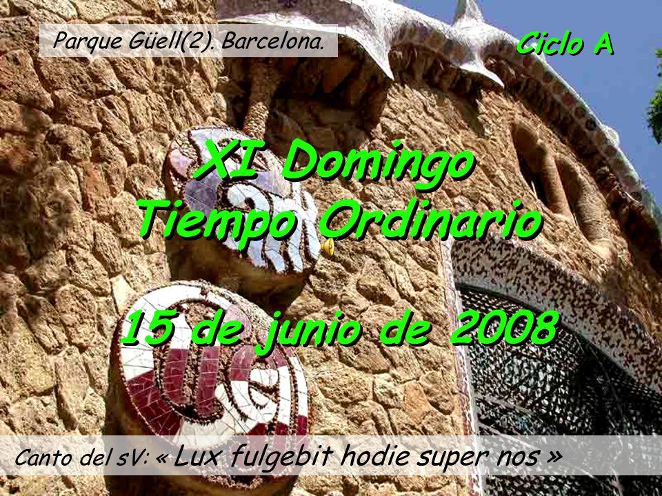 XI Domingo Tiempo Ordinario