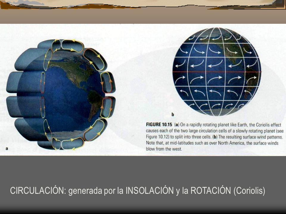 CIRCULACIÓN: generada por la INSOLACIÓN y la ROTACIÓN (Coriolis)