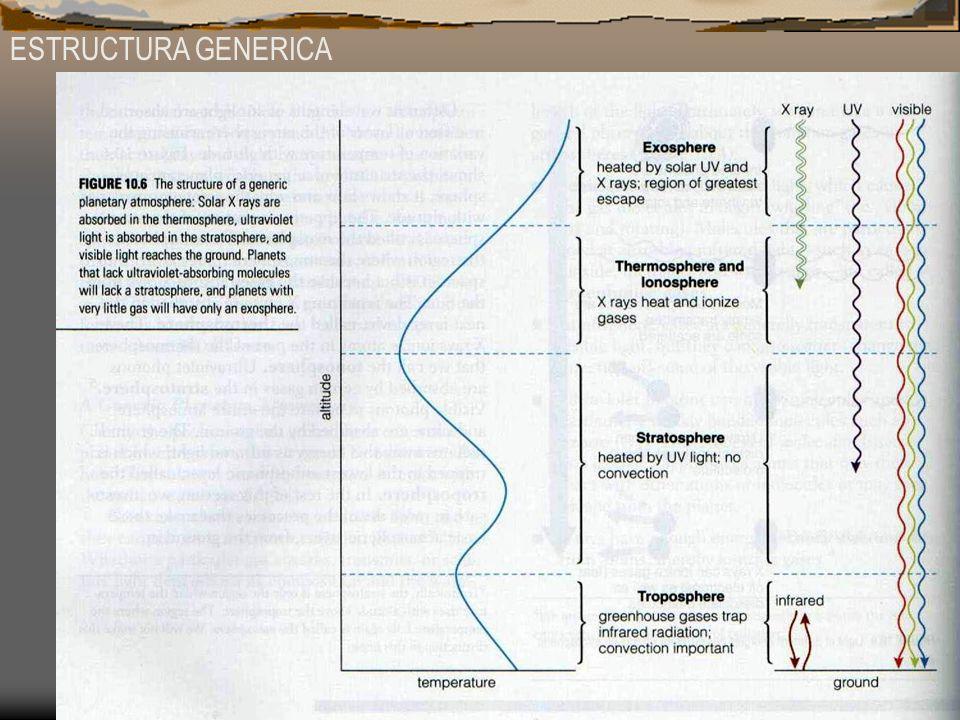 ESTRUCTURA GENERICA