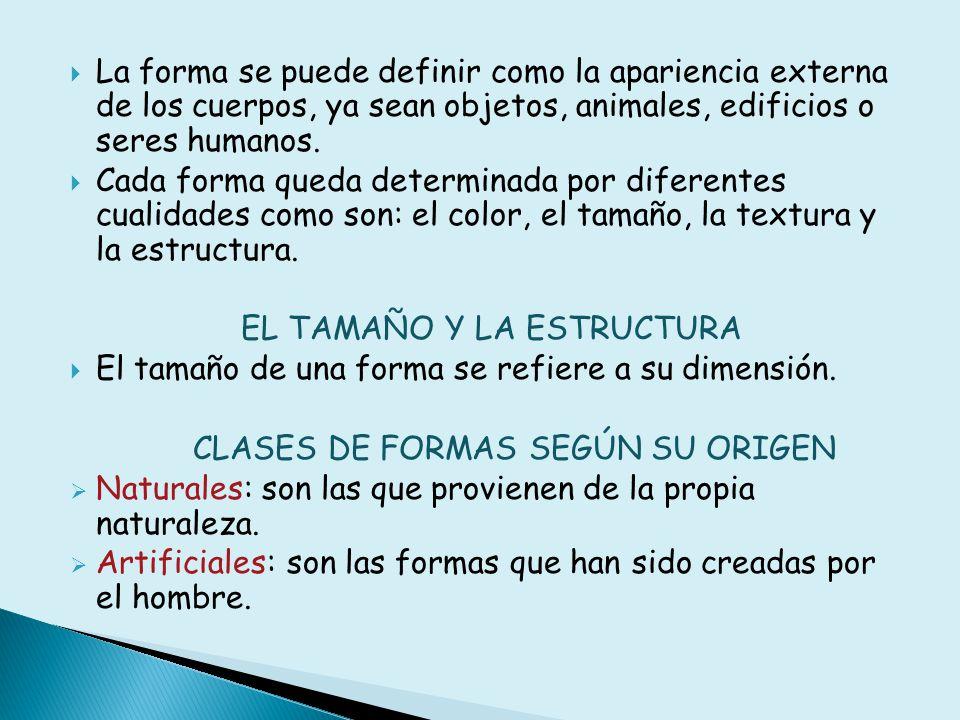 La forma se puede definir como la apariencia externa de los cuerpos, ya sean objetos, animales, edificios o seres humanos.