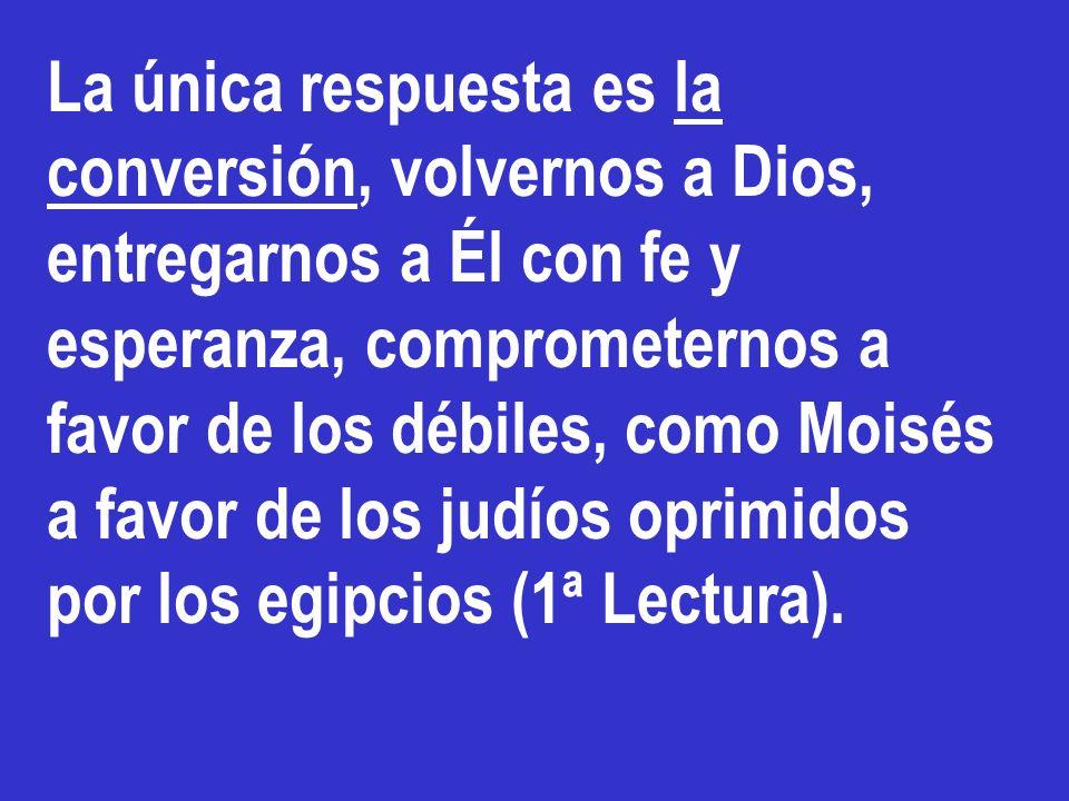 La única respuesta es la conversión, volvernos a Dios, entregarnos a Él con fe y esperanza, comprometernos a favor de los débiles, como Moisés a favor de los judíos oprimidos por los egipcios (1ª Lectura).