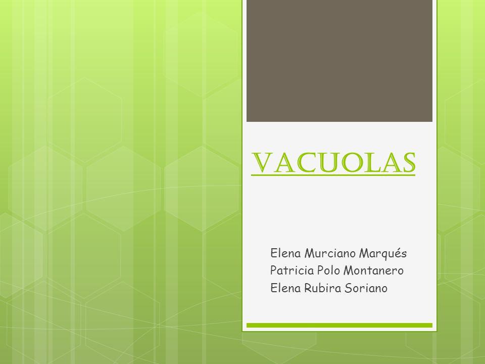 Elena Murciano Marqués Patricia Polo Montanero Elena Rubira Soriano