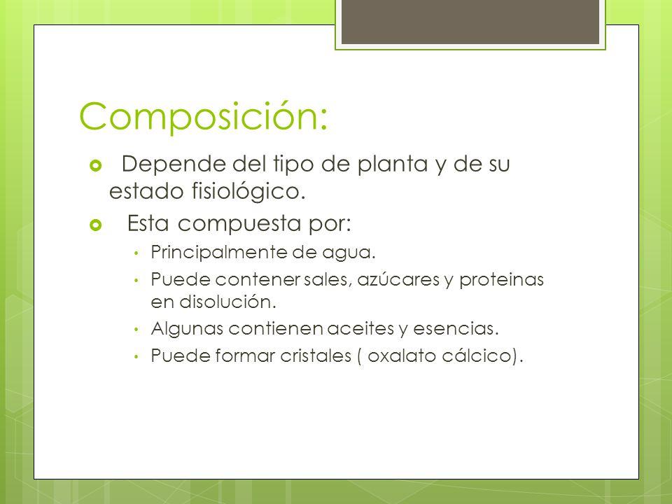 Composición: Depende del tipo de planta y de su estado fisiológico.