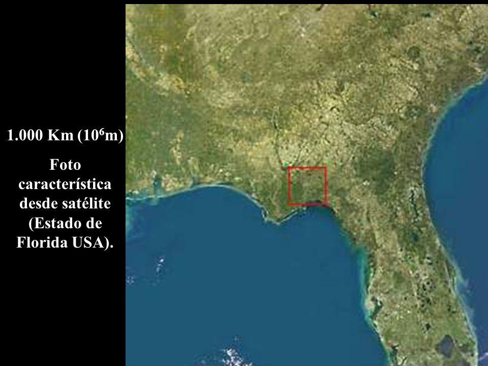 Foto característica desde satélite (Estado de Florida USA).