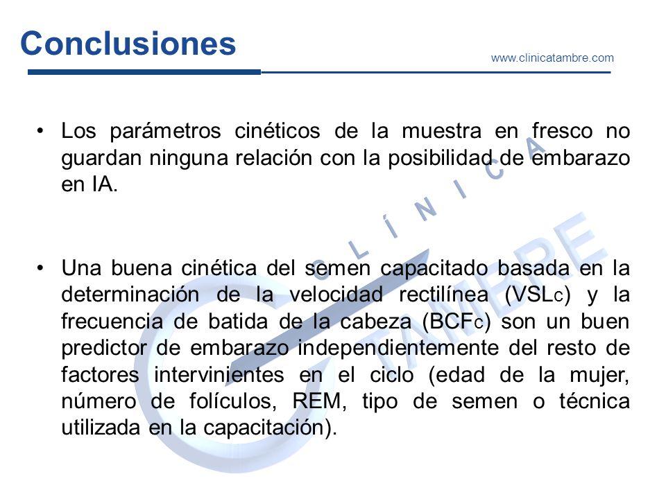 Conclusiones www.clinicatambre.com.