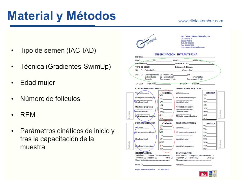 Material y Métodos Tipo de semen (IAC-IAD) Técnica (Gradientes-SwimUp)