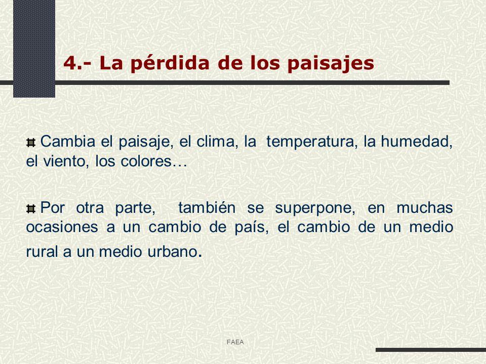 4.- La pérdida de los paisajes