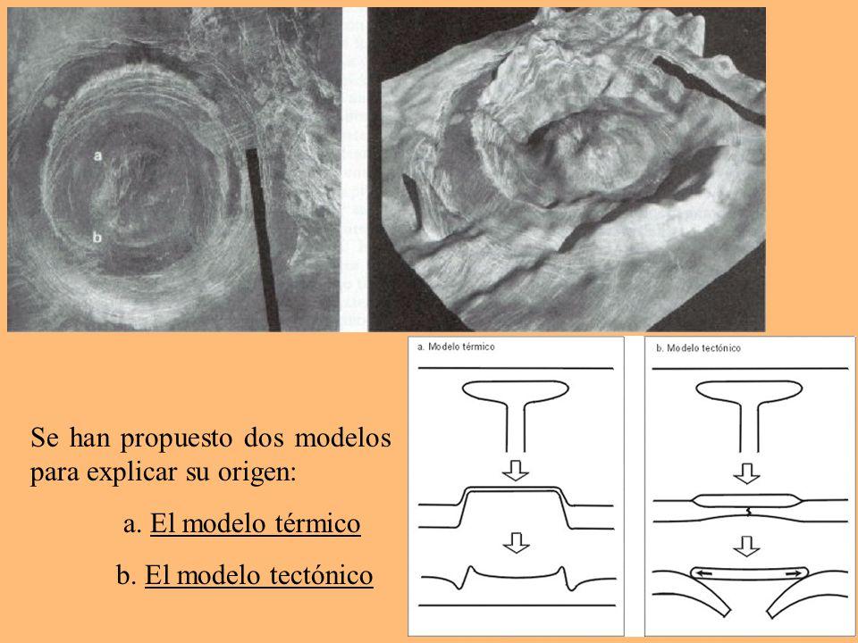 Se han propuesto dos modelos para explicar su origen: