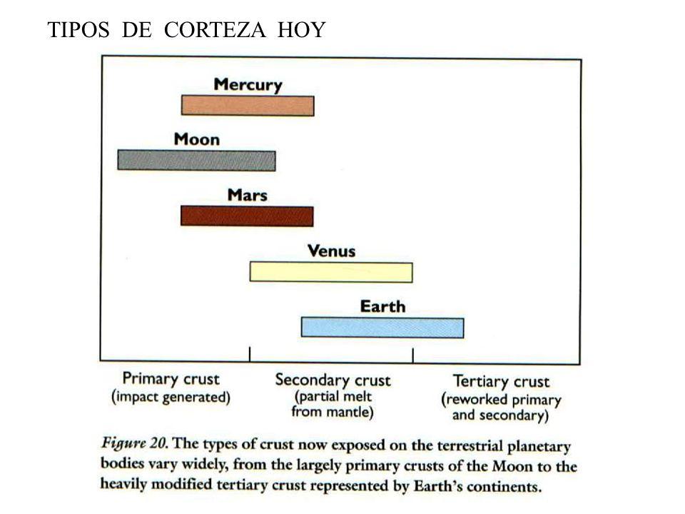 TIPOS DE CORTEZA HOY