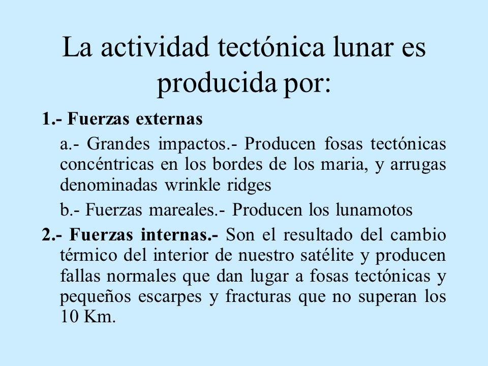 La actividad tectónica lunar es producida por: