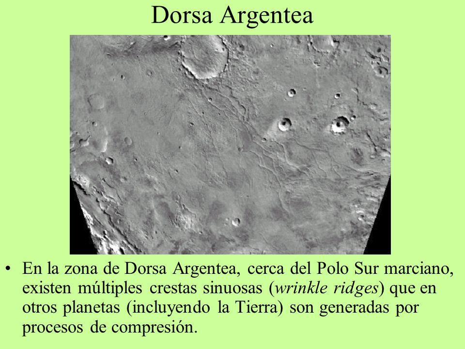 Dorsa Argentea