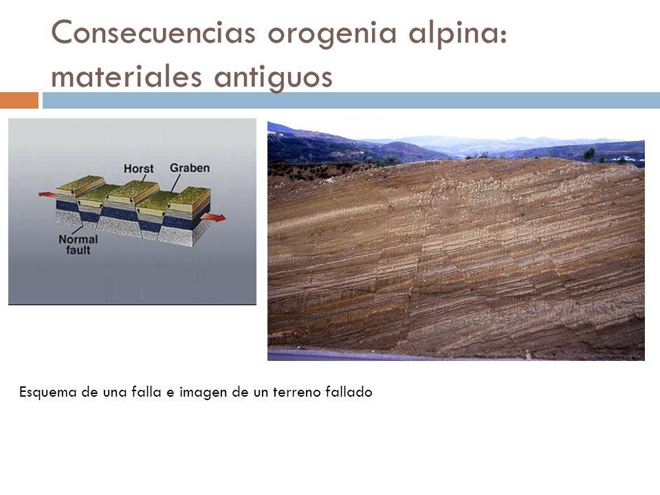 Consecuencias orogenia alpina: materiales antiguos