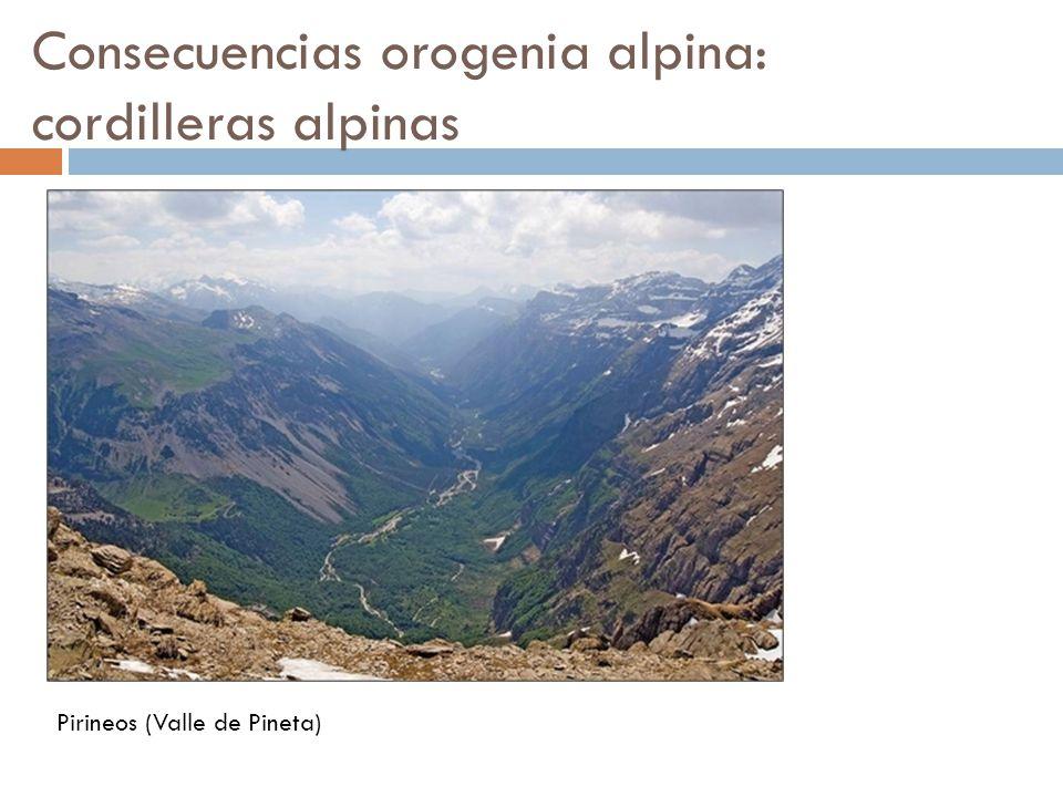 Consecuencias orogenia alpina: cordilleras alpinas