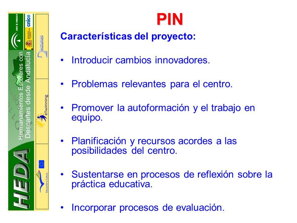 PIN Características del proyecto: Introducir cambios innovadores.