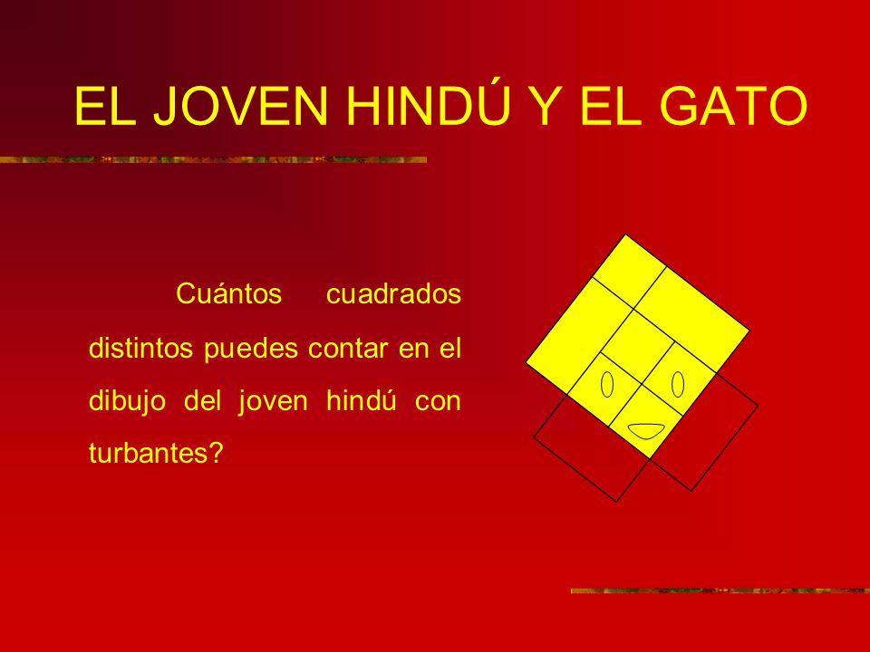 EL JOVEN HINDÚ Y EL GATO Cuántos cuadrados distintos puedes contar en el dibujo del joven hindú con turbantes