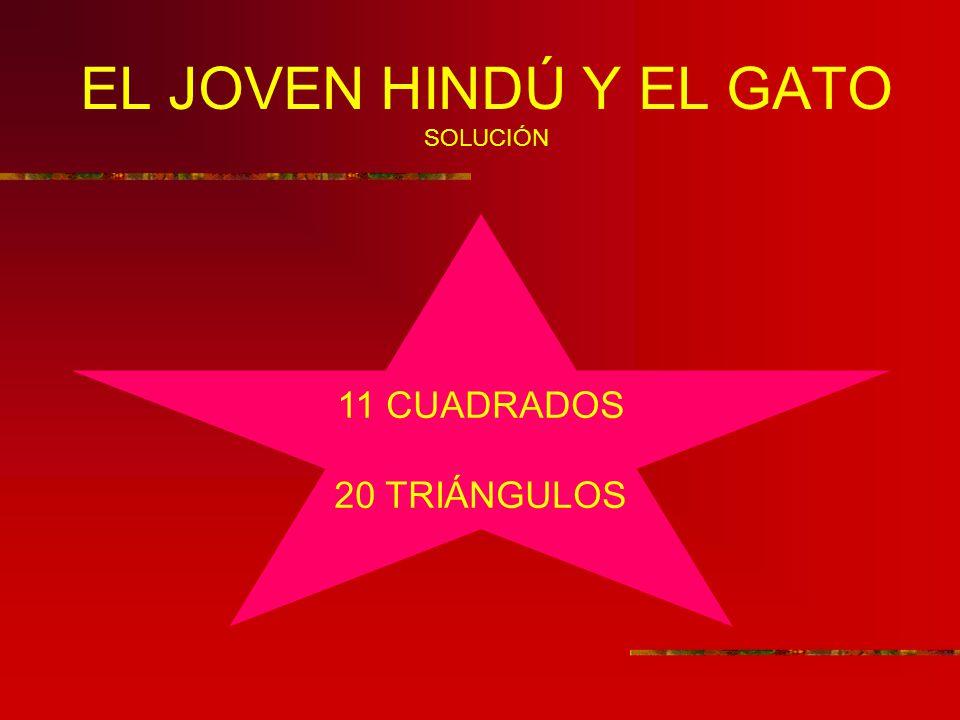 EL JOVEN HINDÚ Y EL GATO SOLUCIÓN