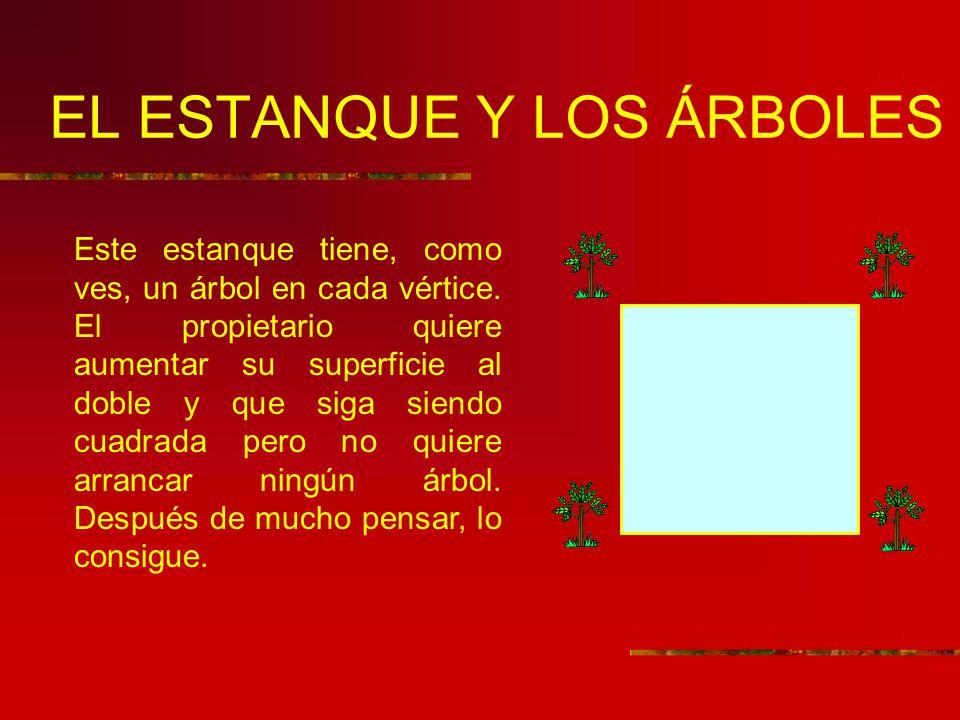 EL ESTANQUE Y LOS ÁRBOLES