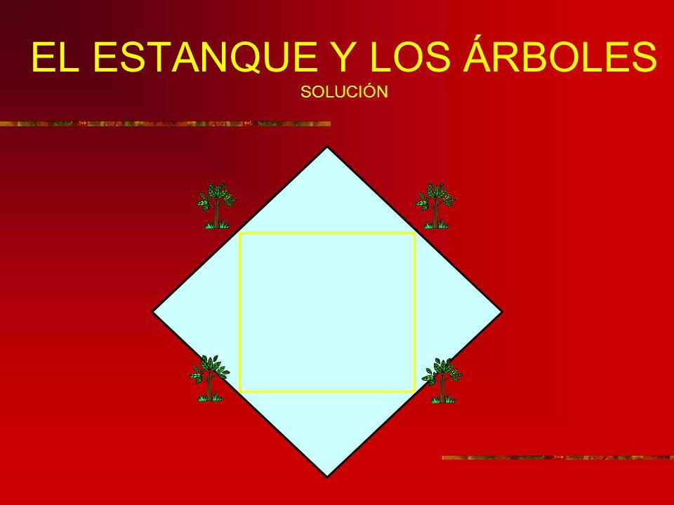 EL ESTANQUE Y LOS ÁRBOLES SOLUCIÓN
