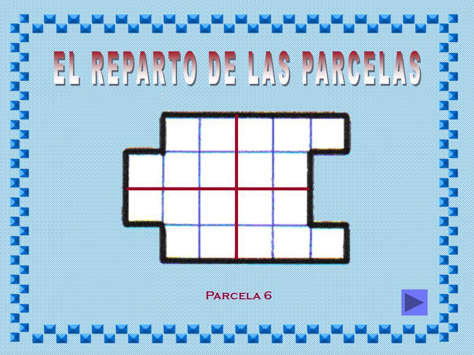 EL REPARTO DE LAS PARCELAS
