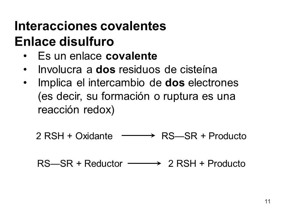 Interacciones covalentes Enlace disulfuro