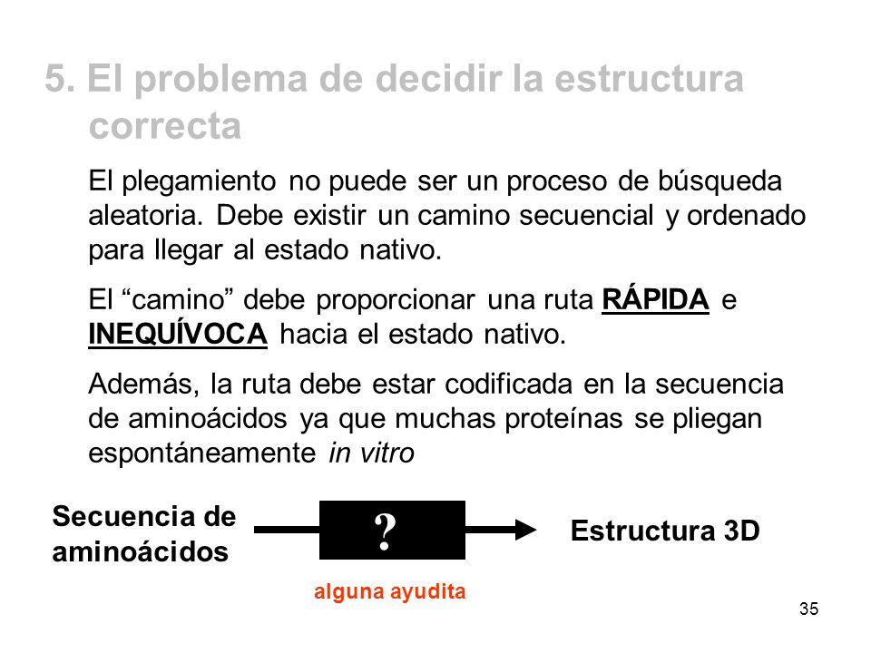 5. El problema de decidir la estructura correcta