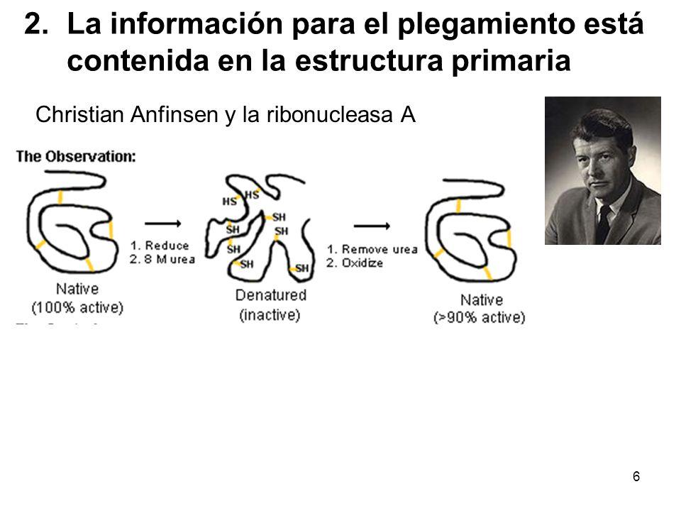 La información para el plegamiento está contenida en la estructura primaria