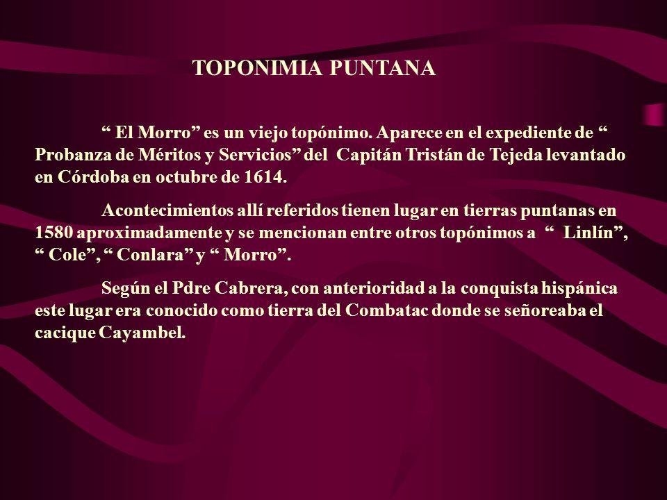 TOPONIMIA PUNTANA