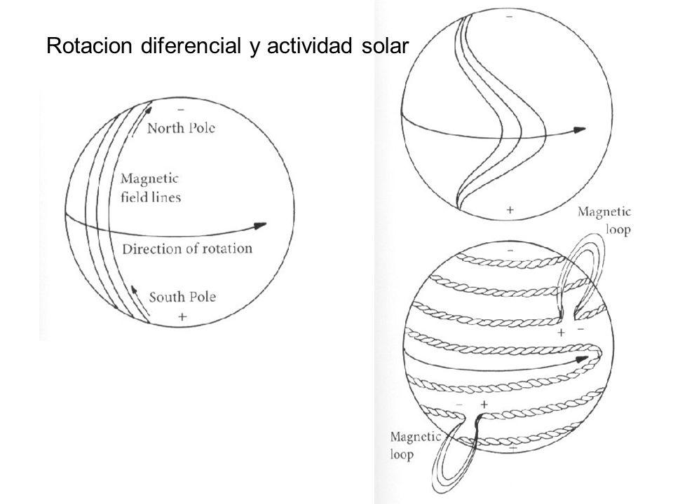 Rotacion diferencial y actividad solar