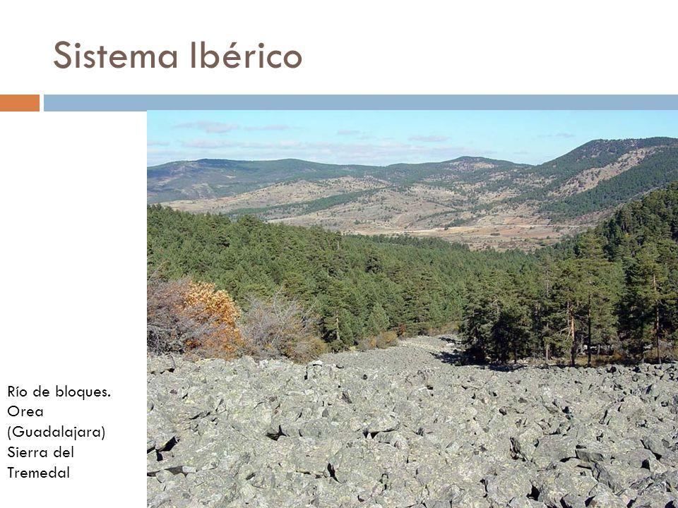Sistema Ibérico Río de bloques. Orea (Guadalajara) Sierra del Tremedal