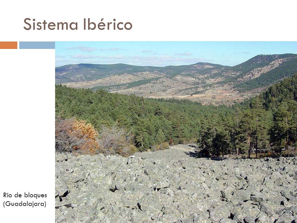 Sistema Ibérico Río de bloques (Guadalajara)
