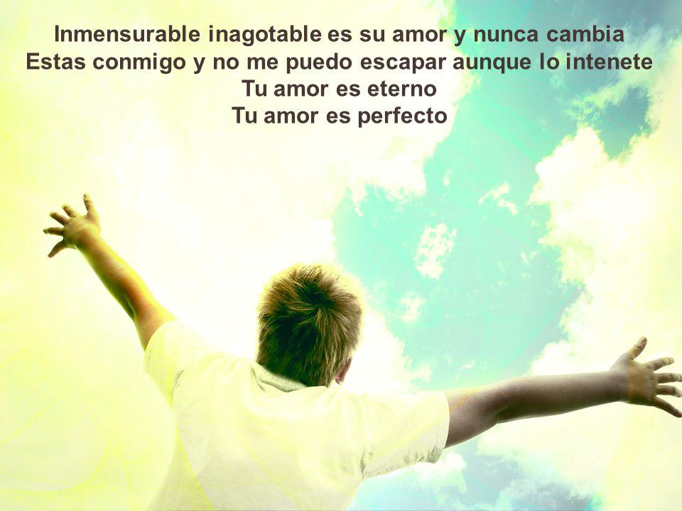 Inmensurable inagotable es su amor y nunca cambia
