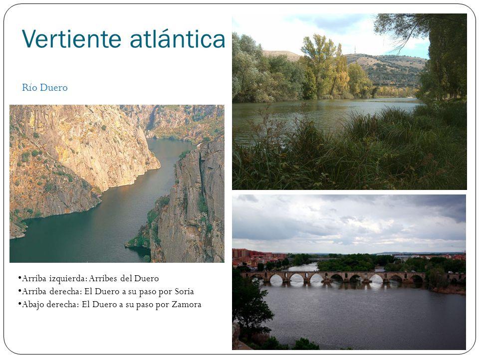 Vertiente atlántica Río Duero Arriba izquierda: Arribes del Duero