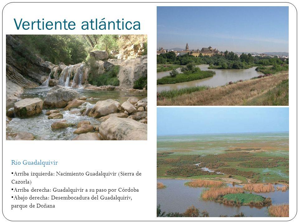 Vertiente atlántica Río Guadalquivir