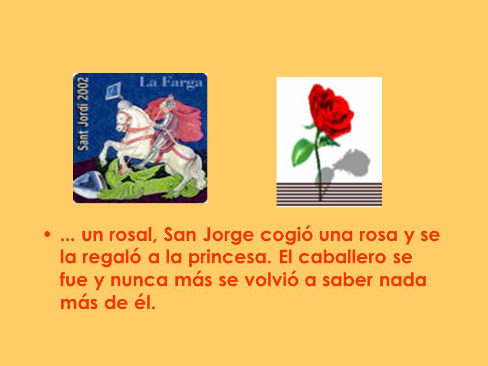 un rosal, San Jorge cogió una rosa y se la regaló a la princesa