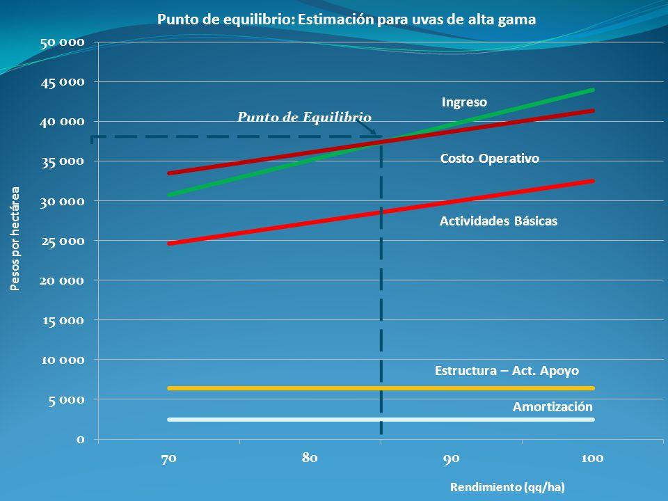 Punto de equilibrio: Estimación para uvas de alta gama